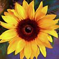 Betsy's Sunflower by Casey Heisler
