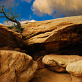 Between A Rock And A Hard Place by Harry Spitz