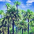 Beverly Hills Palms by Alicia Hollinger