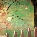 Beyond Fenceposts by Ellen Cannon