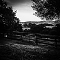 Beyond The Fence by Heather Joyce Morrill