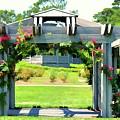 Bicentennial Rose Garden by Jeelan Clark