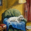 Bichon Frise On Chair by Thor Wickstrom