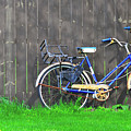 Bicycle And Gray Fence by David Arment