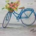Bicycle I by Sharon Reed