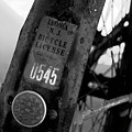 Bicycle License by David Lee Thompson