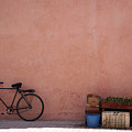 Bicycle Marrakech  by Pauline Cutler