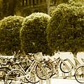 Bicycle Park 2 by Emmanuel  Sanni