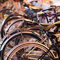 Bicycle Park by Emmanuel  Sanni