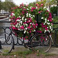 Bicycle Parked At The Bridge In Amsterdam by Bernard Jaubert