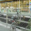 Bicycle Rack by Linda Carruth