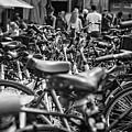 Bicycles Amsterdam Black And White by Lauren Pfahlert