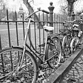 Bicycles Parked At Fence On Street, Netherlands by David Ortega Baglietto