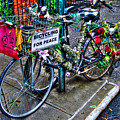 Bicycling For Peace by Randy Aveille