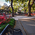 Bienville Square At Easter by Michael Thomas