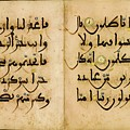 Bifolium In Maghribi Script by Eastern Accents