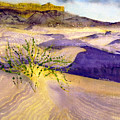 Big Bend Landscape II by Myrna Salaun