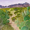 Big Bend Landscape by Myrna Salaun