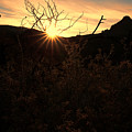 Big Bend Sunrise 1 by Judy Vincent