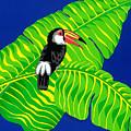Big Billed Bird by Lucyna A M Green