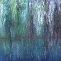 Big Cypress Swamp by Swess