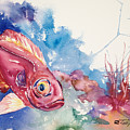 Big Eye Squirrelfish by Tanya L Haynes - Printscapes
