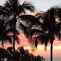 Big Island Sunset 1 by Karen J Shine