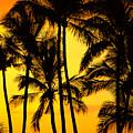 Big Island, View by Greg Vaughn - Printscapes