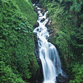 Big Island Watefall by William Waterfall - Printscapes