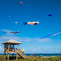 Big Kites Delray Beach by Lawrence S Richardson Jr