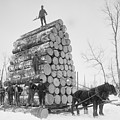 Big Load Of Logs On A Horse Drawn Sled by Everett
