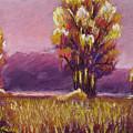 Big Otter Creek - Dawn by Wynn Creasy