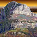 Big Rock by Wayne Bonney