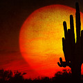 Big Saguaro Sunset by James BO  Insogna