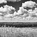 Big Sky - Wisconsin  by Ricky L Jones