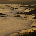 Big Sur Coastline by Don Wolf