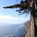 Big Sur Coastline by Linda Woods