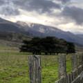 Big Sur Fence Line by Robert Melvin