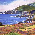 Big Sur Wildflowers - Plein Air by David Lloyd Glover