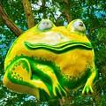 Big Tree Frog by Mel Steinhauer