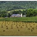 Big Valley Farm by R Thomas Berner