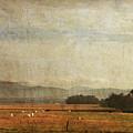 Big Valley by Guy Crittenden