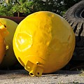 Big Yellow Balls by David Lee Thompson