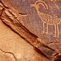 Bighorn Petroglyph II by Susan Candelario