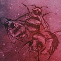 Bijen by Sylvie Boersma