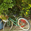 Bike In Maupiti by Kyle Rothenborg - Printscapes