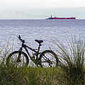 Bike On The Bay by Brian Wallace