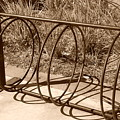 Bike Rack by Rob Hans