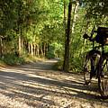 Bike Rest by Dylan Punke