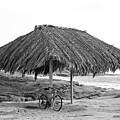 Bike Sale At The Windnasea Shack In La Jolla. by Michael Sangiolo
